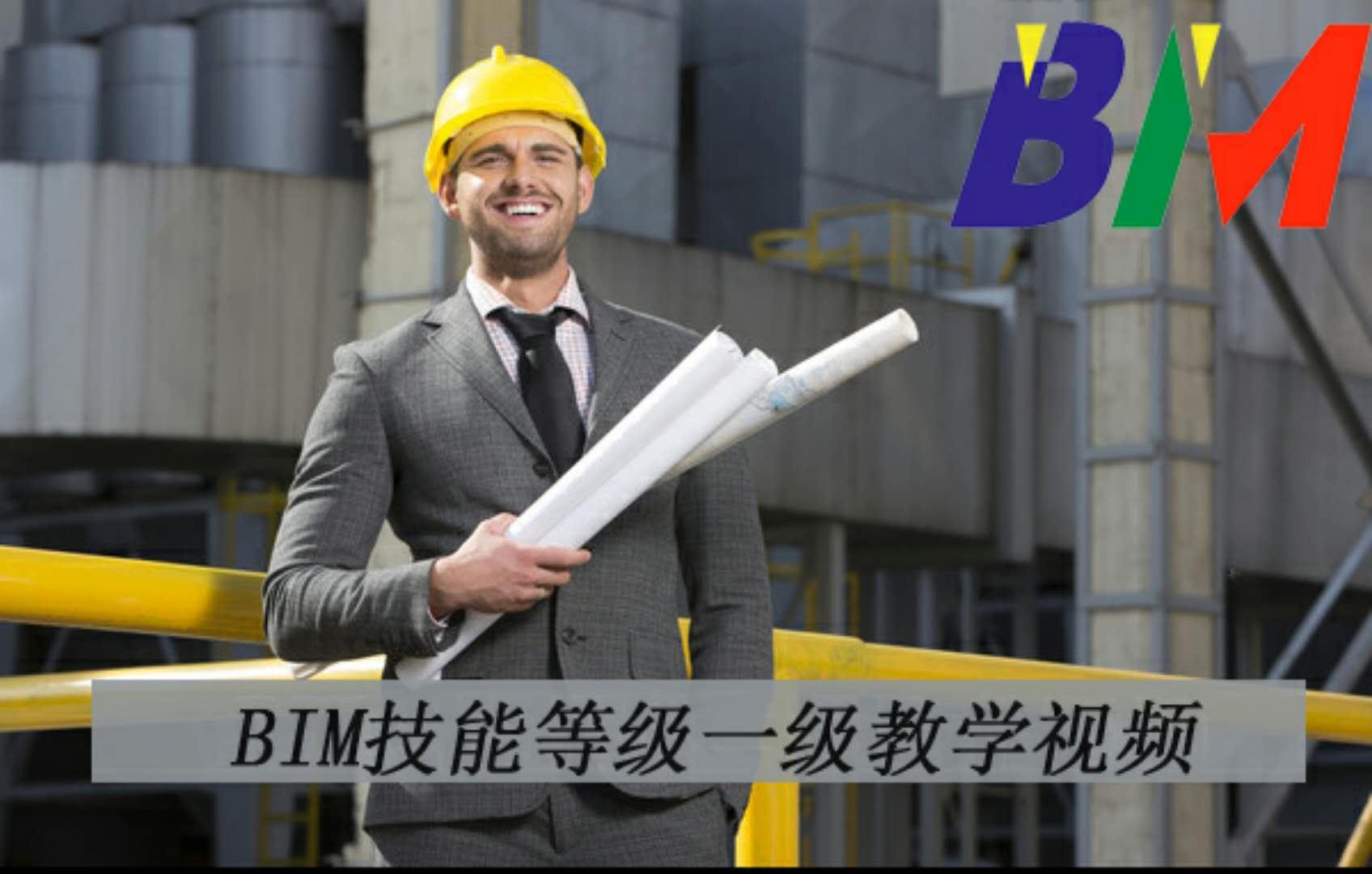 BIM技能等级一级教学视频